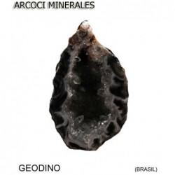 GEODINO (BRASIL)