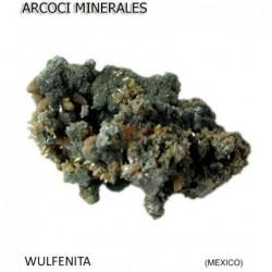 WULFENITA (MEXICO)