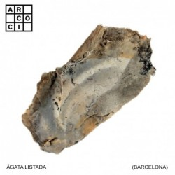 AGATA LISTADA (BARCELONA)