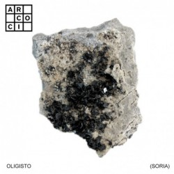 OLIGISTO (SORIA)