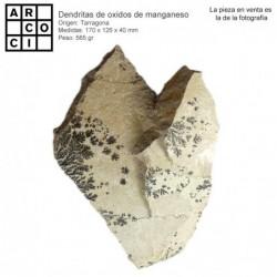 Dendritas de oxidos de manganeso (Tarragona)
