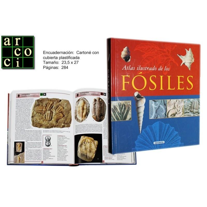 Atlas Ilustrado de los Fósiles.