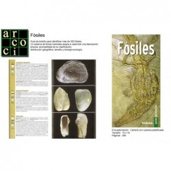Fósiles - Guía de bolsillo