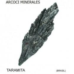TARAMITA (BRASIL)