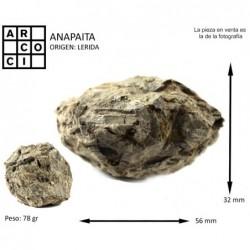 ANAPAITA (LERIDA) Nodulo